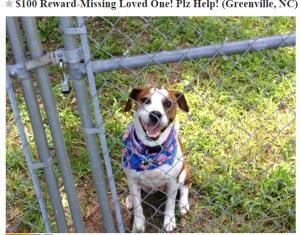 100 Reward Missing Loved One  Plz Help