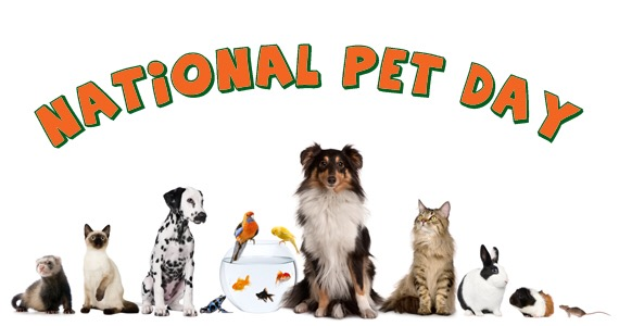 National Pet Day Stories on Friends of Wayne County Animals
